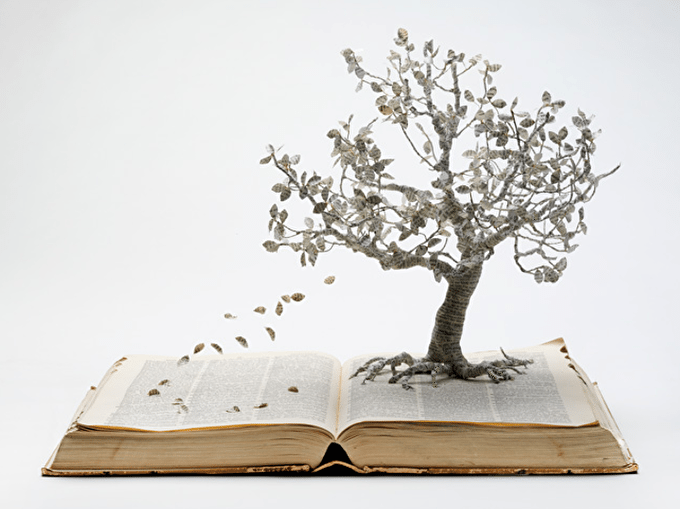 World Book Day Interview With Book Sculptor Su Blackwell