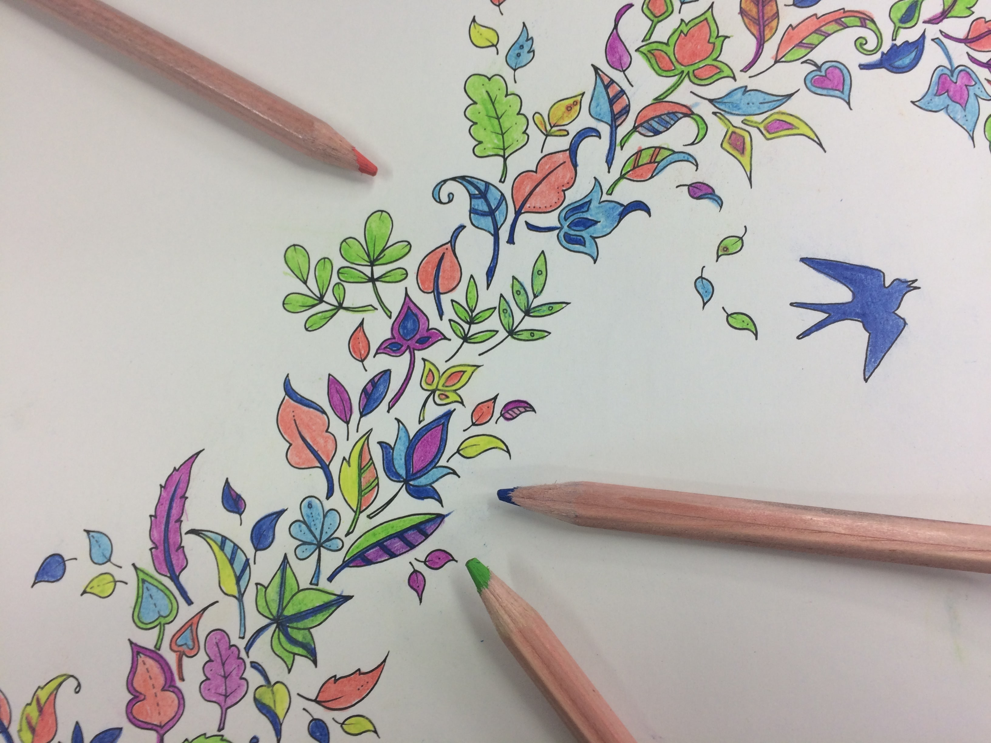Colouring In For Adults De Stress With This New Craze