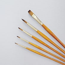 Pro Arte Prolene Plus Series 007/008 Watercolour Brush Cass Exclusive Set of 5