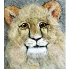 Dry Felting Pet Portraits Workshop, 23rd June, 10:30am at Cass Art Manchester