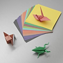 NPW 5 Minute Origami Set