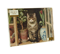 Creative Tops Basking Cat Pack Of 6 Premium Placemats