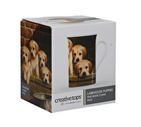 Creative Tops Labrador Puppies Mug In A Box