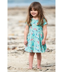 Little Spring Skater Dress