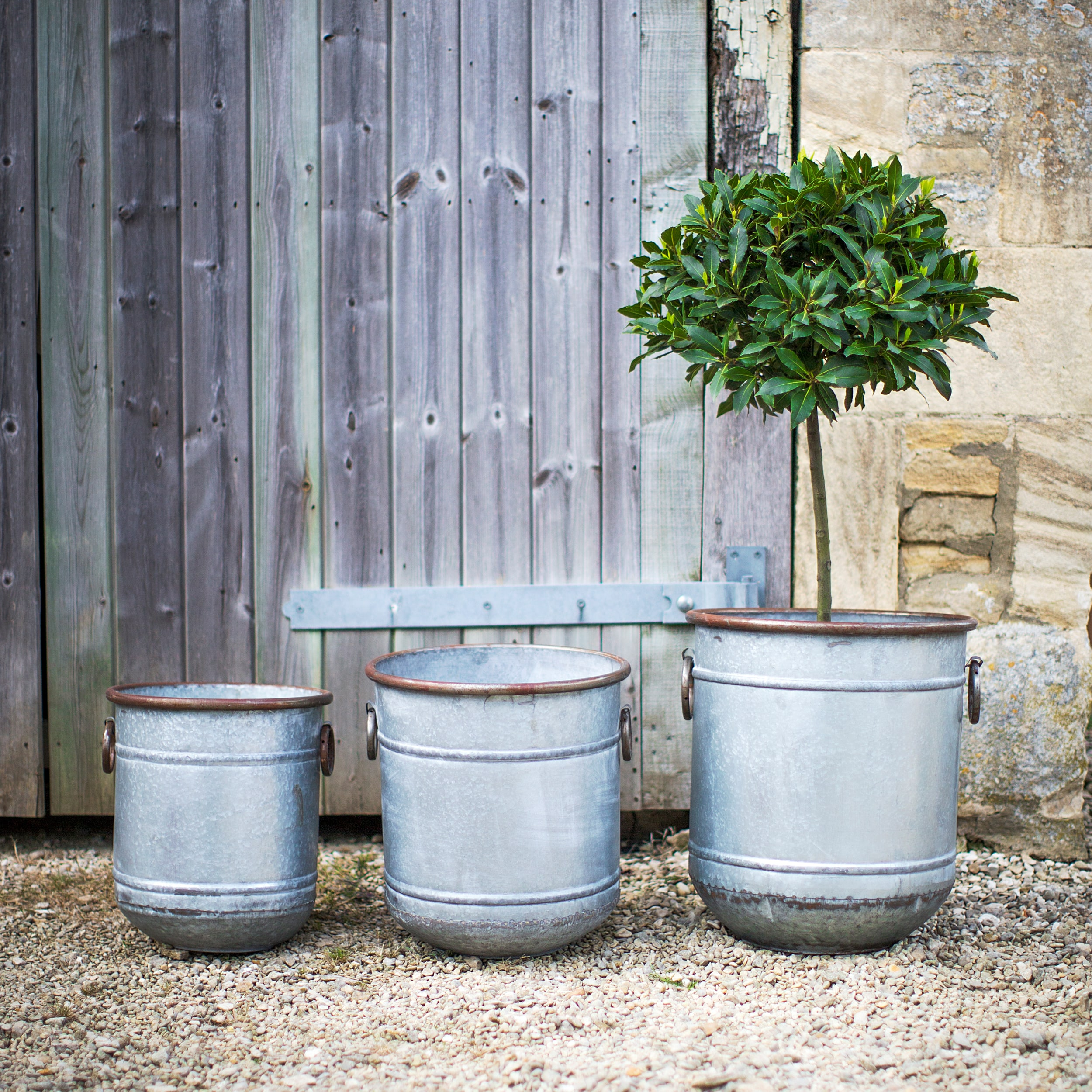 Galvanised Set of 3 Malmesbury Planters  | Garden Trading