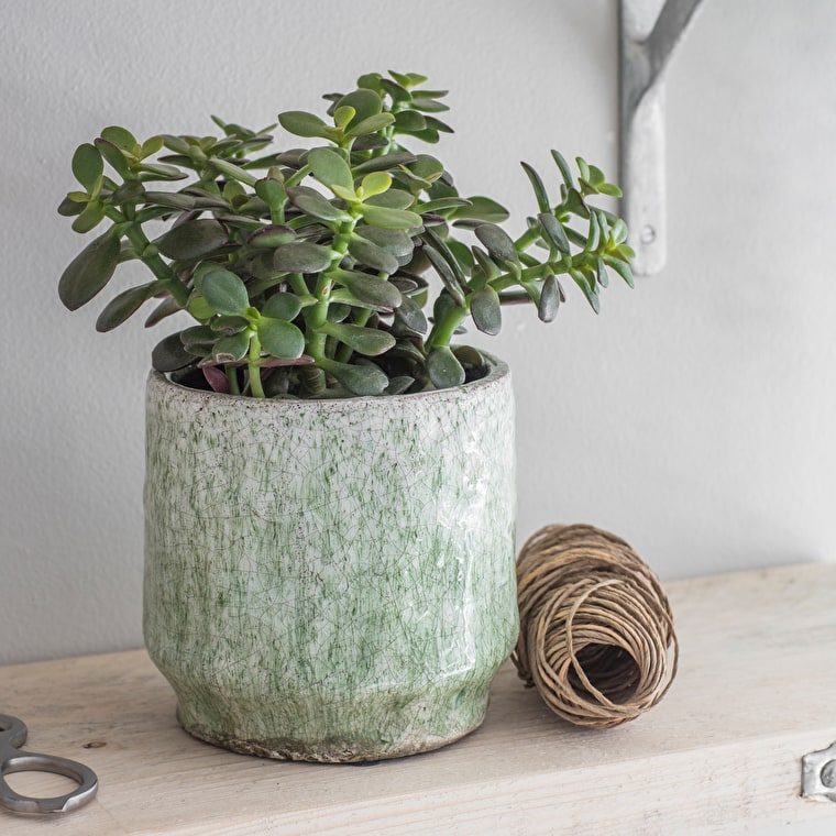 Ceramic Alderton Pot in Light Green in Small or Large | Garden Trading