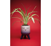 KitchenCraft Ombre Face Planter