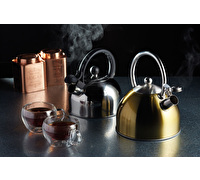 Le'Xpress Mirror Polish 1.4 Litre Whistling Kettle