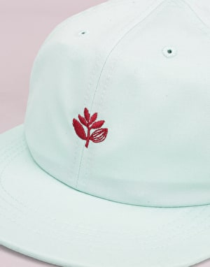 Magenta Plant Cotton 6 Panel Cap - Mint