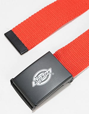 Dickies Orcutt Web Belt - Orange