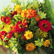 Amber and Green Cut Flower Collection