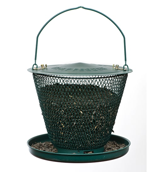 Bird Feeder with Tray