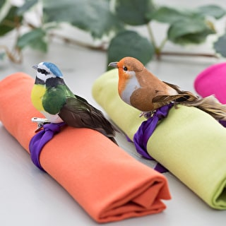 Clip-on Bird Decorations
