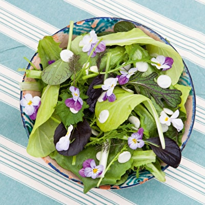 Summer Salad Leaf Mix