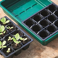 Seed Sowing Trays