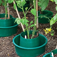 Tomato and Pepper Ring Culture Pots