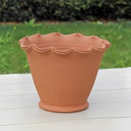 Terracotta Scalloped Pots & Saucers