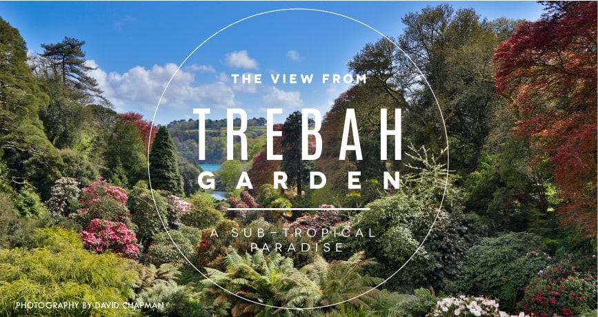 Photo of the image from Trebah Garden down to the Helford River, Cornwall