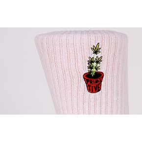 Primitive Planter Crew Socks - White
