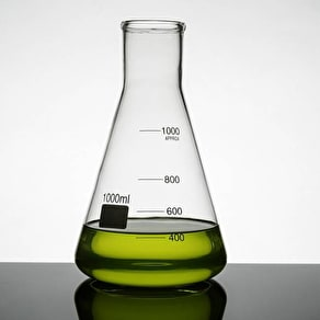 Scientific 'Erlenmeyer' Flask